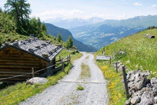 Typischer Weg im naturnahen Zustand im Testgebiet Arosa-Schanfigg (Bild: © HTW Chur)