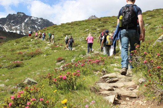 Hochgenuss im Hochgebirge steht im Paznaun in Tirol wieder auf dem Programm. (Bild: TVB Paznaun-Ischgl)
