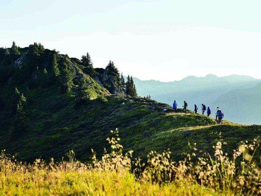 Naturerwachen erleben (Bild: © Alex Kaiser - Montafon Tourismus GmbH)
