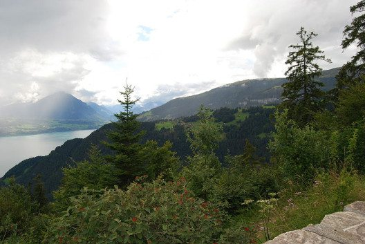 Rund um Beatenberg gibt es mehr als 200 Kilometer markierte Berg- und Wanderwege. (Bild: Dietrich Michael Weidmann, Wikimedia, GNU)