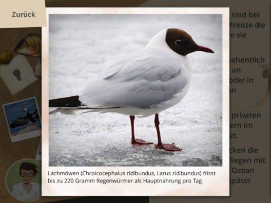 Hinweise in Bild, Ton und Text (Bild: Stadtgärtnerei Basel)