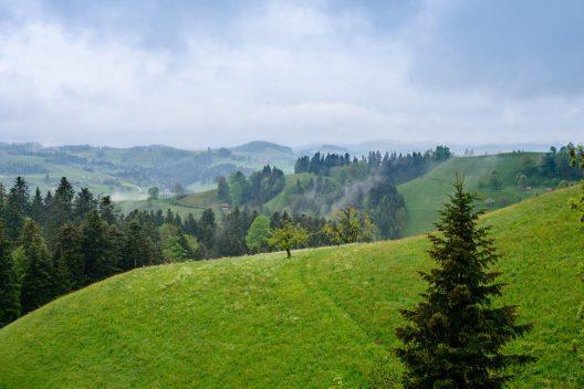 Landschaft bei Hergiswil nahe Willisau (Bild: Norbert Nagel, Wikimedia, CC)