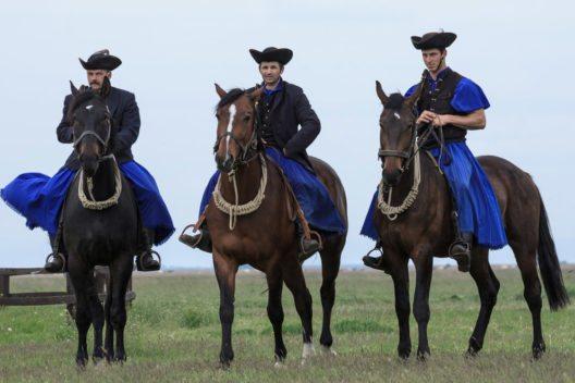 Das Reiten in der Puszta hat lange Tradition. (Bild: bjonesphotography – Shutterstock.com)