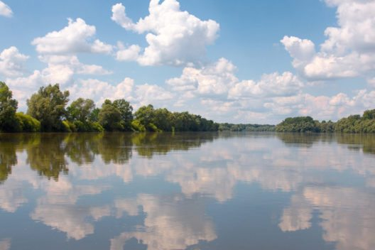 Im Nationalpark Donau-Drau (Bild: Peter Gudella – Shutterstock.com)