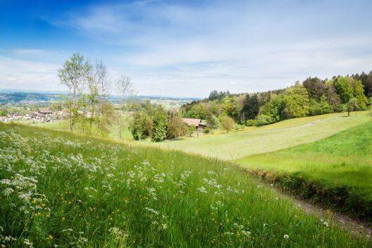 Über Jahrhunderte im Besitz der Fürstäbte von Sankt Gallen (Bild: © Brilliant Eye - shutterstock.com)