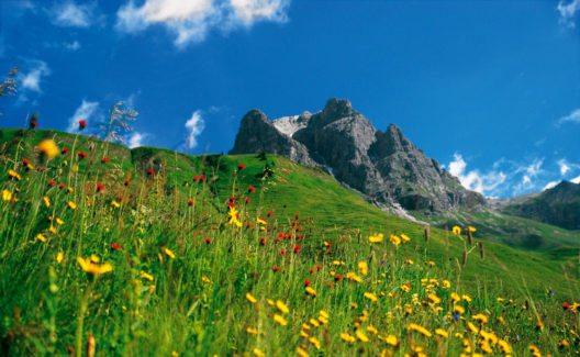 Alpine Hüttenwanderung Bregenzerwald: Widderstein (Bild: Herbert Flatz)