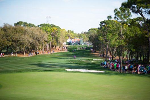 Auch die wichtigste Golf-Tour der USA, die PGA-Tour, kommt jährlich in die wunderschöne Region Floridas.