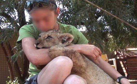 Löwenstreicheln in Südafrika (Bild: FOUR PAWS 2015)