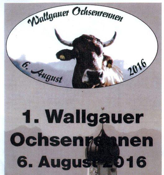 Wallgauer Ochsenrennen (Bild: Freiwillige Feuerwehr Wallgau)