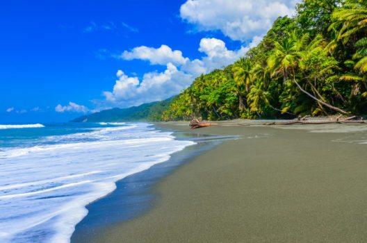 Wild beach - Corcovado Rainforest (Bild: © Simon Dannhauer - shutterstock.com)