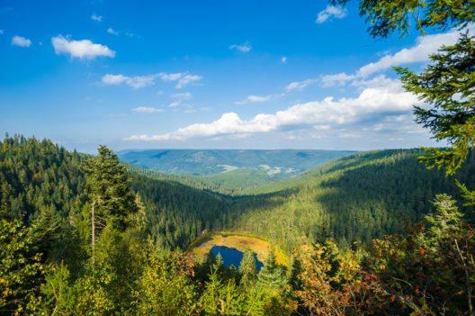 Der Schwarzwald – eine faszinierende Urlaubsregion. (Bild: Juergen Wackenhut – Shutterstock.com)