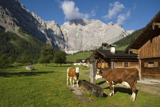 Engalmen (Bild: © Silberregion Karwendel)