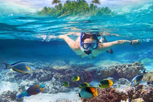 Schnorcheln im Roten Meer (Bild: © Patryk Kosmider - shutterstock.com)
