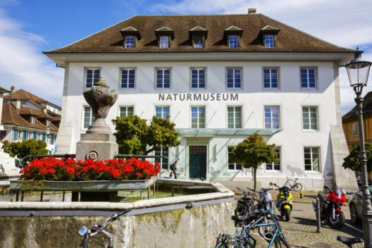 Naturmuseum von Solothurn (Bild: marekusz – Shutterstock.com)