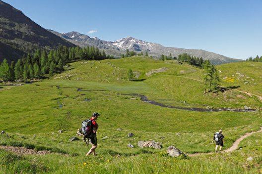 Suedtirol, Ultental, Abstieg von der oberem Weissbrunneralm, zirka 15 Minuten Gehzeit (Bild: © Tourismusbüro Ultental)