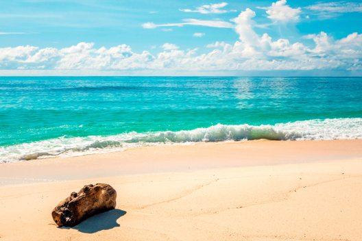 Denis Island (Bild: © SeyVillas)