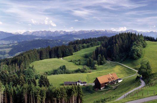 Bergpanorama vom Pfänder mit Pfänderdohle (Bild: © Pfänderbahn AG)