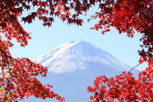 Um den japanischen Vulkan Fuji herum zeigt sich der Herbst in seinen schönsten Farben. (Bild: Skyseeker via Flickr)