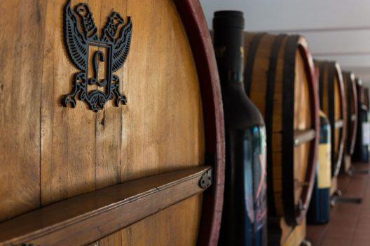 Weingenüsse in Argentinien (Bild: Evaneos)