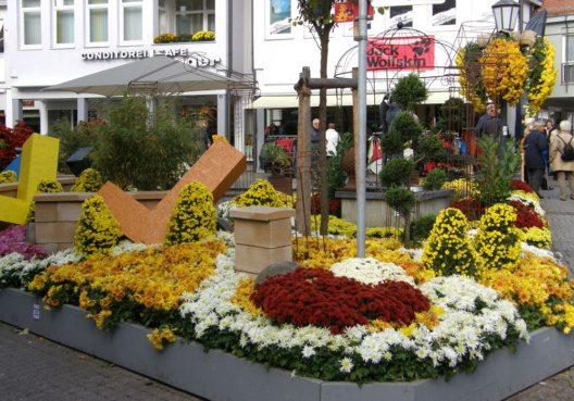 Mit der Chrysanthema Lahr lädt die weltoffene Stadt im Schwarzwald zu einem Besuch ein. (Bild: Jean-Marc Laugner, Wikimedia, GNU)