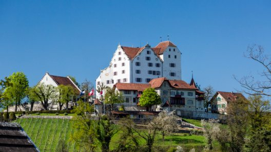 Schloss Wildegg (Bild: © oscity - shutterstock.com)
