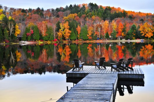 Bunte Herbstwälder in Ontario (Bild: Elenathewise – Shutterstock.com)