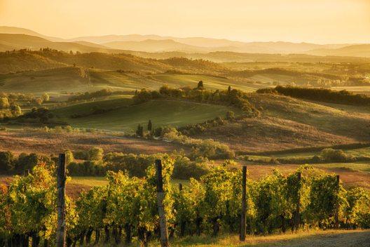 Die erste Oktoberhälfte ist die ideale Zeit für einen Besuch in der Toskana. (Bild: MauMar70 – istockphoto.com)