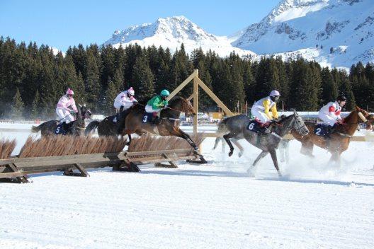 Aroser Pferderennen auf Schnee