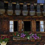 Sennhuette (Bild: © Lenk Simmental Tourismus - swiss-image.ch/Mathias Kunfermann)