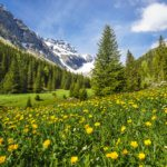 Iffigtal (Bild: © Lenk Simmental Tourismus - swiss-image.ch)