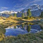 Hohberg mit Blick auf mit Blick auf das Mittaghorn (Bild: © Lenk Simmental Tourismus - swiss-image.ch/Patrick Aegerter)