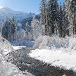 Winterlandschaft (Bild: © Lenk Simmental Tourismus - swiss-image.ch/Paul Geiser)