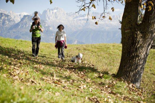 Der farbenprächtige Südtiroler Herbst ist die ideale Jahreszeit für Familienausflüge bei spätsommerlichen Temperaturen, etwa auf den Ritten mit Fernblick auf den Rosengarten. (Bild: IDM Südtirol /Alex Filz)