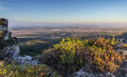 Puig de Randa (Bild: fincallorca)