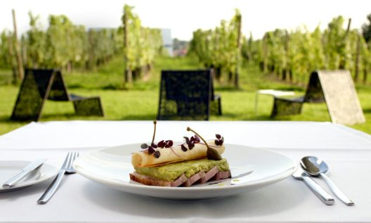 LOISIUM Wine and Spa Resort Langenlois (Bild: Design Hotels)