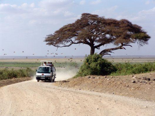 kenia_safari-1029078_1920-c-pixabay