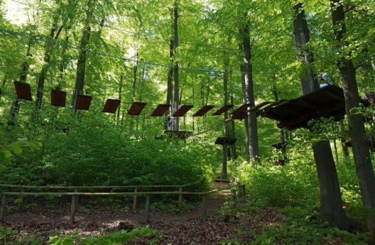Der Nationalpark Kellerwald-Edersee (Bild: Manfred Ruckszio – Shutterstock.com)