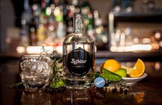 Bisbino - der erste Tessiner Gin aus dem Muggiotal