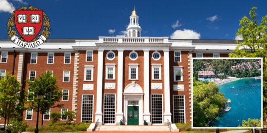 Der Erfolg des Hillside Beach Clubs wird von der Harvard Business School erforscht. (Bild: © Harvard University)