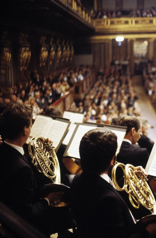 Musikverein (Bild: © WienTourismus Harry Weber)