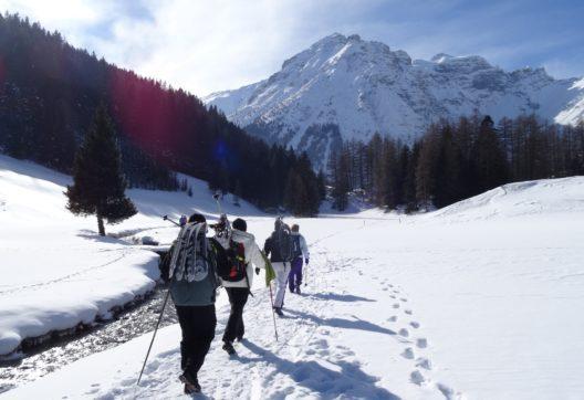 Winterwandern Obernberg (Bild: © TVB Wipptal)