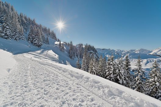 Winterwanderwege im Tannheimer Tal