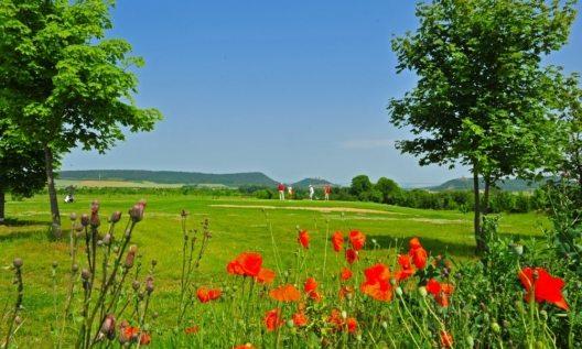 """In und um Erfurt haben sich in den letzten Jahren attraktive Möglichkeiten für Golfer entwickelt. Mit zwei Plätzen hat sich das Hotel Zumnorde nun für sein Package """"Golfen in Thüringen"""" zusammen getan."""