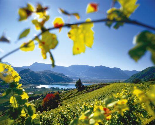 Die sonnigen Weinberge im Süden des Landes rund um den Kalterer See bieten Gästen und Einheimischen zur Herbstzeit Ruhe und Genuss. (Bild: © Südtirol Marketing / Clemens Zahn)