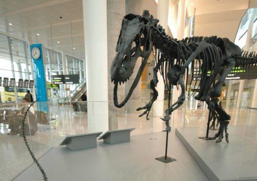 Dinosaurierskelette zur Begrüssung (Bild: © Melissa Lim - GTAA)