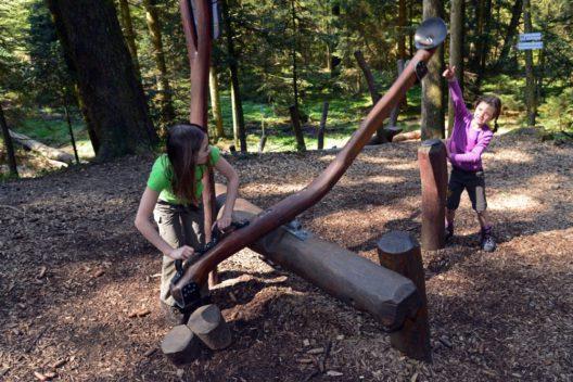 Spaß im Wald: Tannenzapfenschleuder