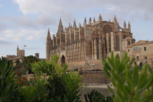 Palma (Bild: Pixabay)