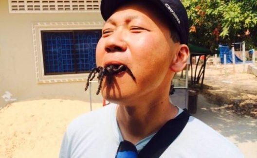 Mann mit Spinne im Mund (Bild: © GetYourGuide)