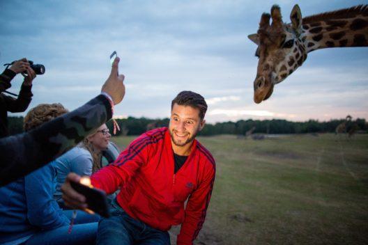 """Bei """"BrabantNacht"""" am 23. September gibt es auch eine Nachtsafari im Safaripark Beekse Bergen. (Bild: © Willeke Machiels / willekemachiels.com)"""