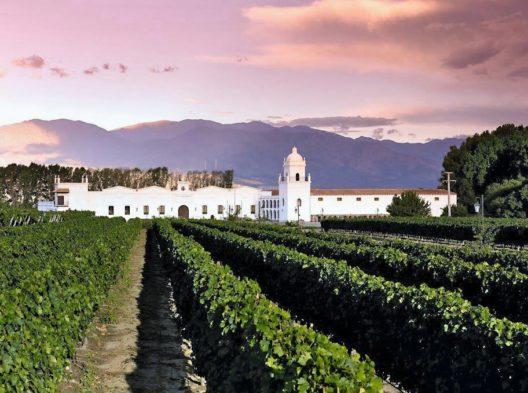 Auf Weinreise in Argentinien (Bildquelle: Travelhouse)